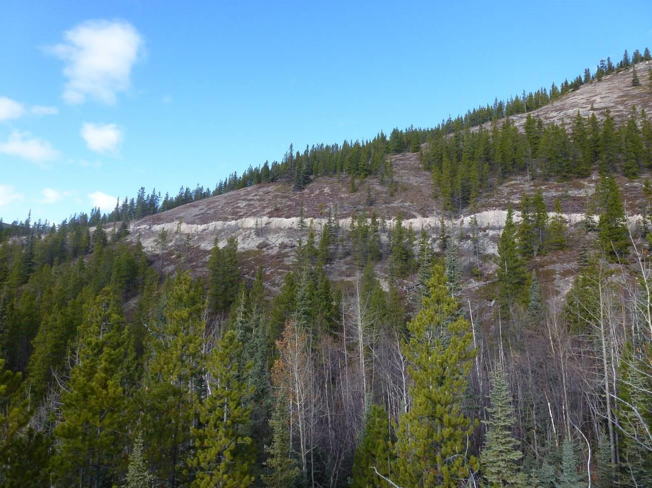 Old Alaska Highway Trail Muncho Lake British Columbia