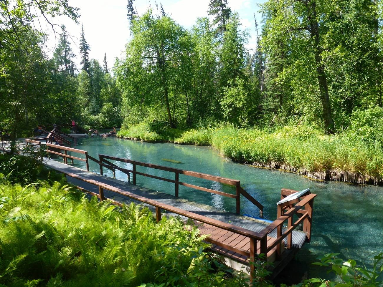 Liard River Hot Springs British Columbia