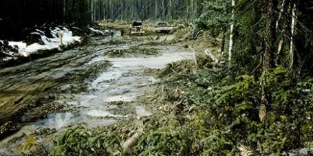 Alaska Highway Construction Permafrost Corduroy Road
